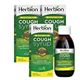 Herbion Naturals Sugar-Free Cough Syrup with Stevia, 5 fl oz - Relieves Cough, Soothes Throat, Promotes Healthy Bronchial and Lung Function (Pack of 3)