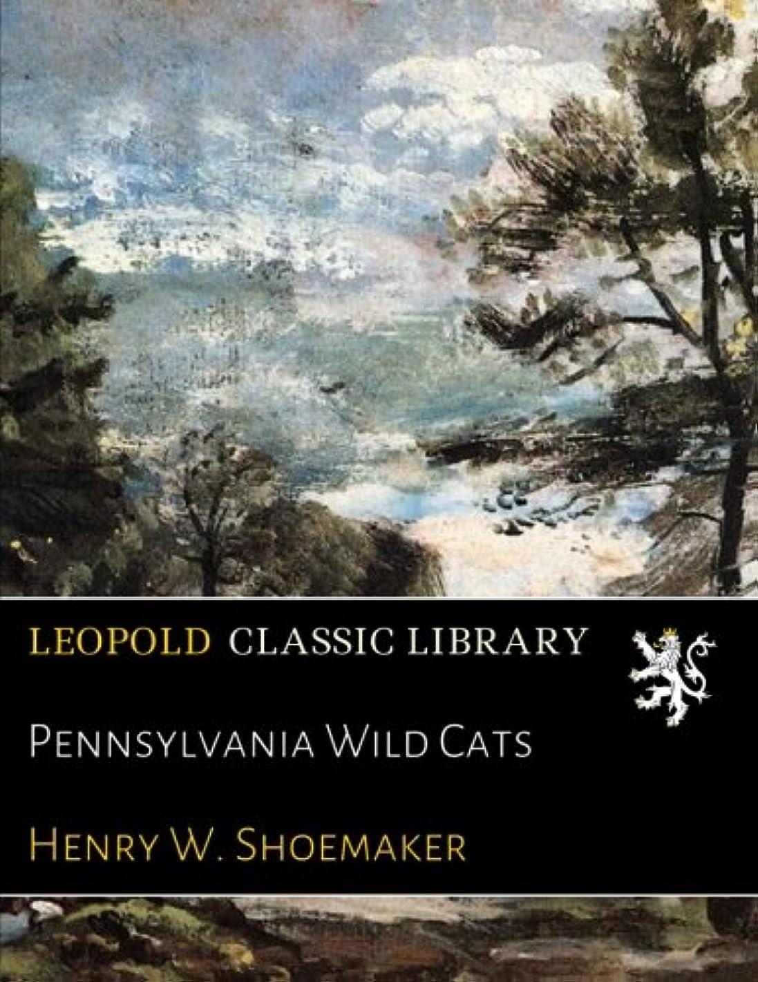 休日に階段カテナPennsylvania Wild Cats