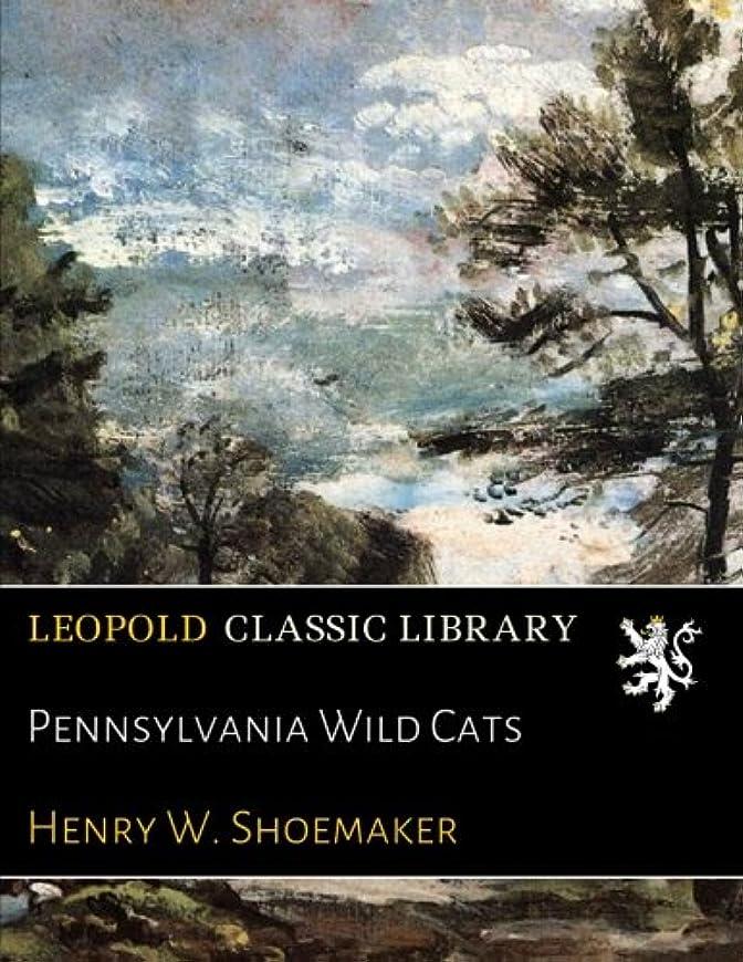 船尾弾薬団結Pennsylvania Wild Cats