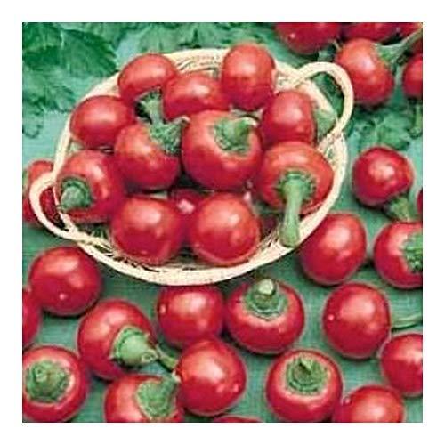 Chili Ciliegia Picante - Cerise Chili - 10 graines