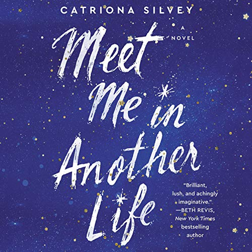 Meet Me in Another Life: A Novel