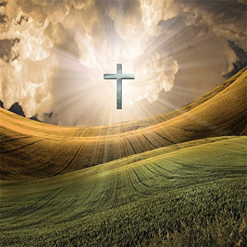 AOFOTO 10x10ft Christian Cross Radiates Light in Sky Backdrop Jesus Christ Photography Background Our Lord Resurrection Religious Lent Holy Week Passion Newborn Easter Photo Studio Props Wallpaper