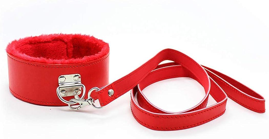 Runsmooth Plush Collar Choker Chain Leash Leather Collar, Fur Collar Choker Necklace with Chain Detachable Cosplay Couple Jewelry for Women Men, Black,Red,Pink