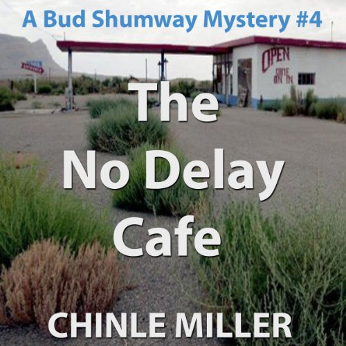 The No Delay Cafe audiobook cover art