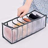 unknow Lionmer - Caja de almacenamiento de ropa interior translúcida para uso en el hogar, color gris, siete cuadrícula