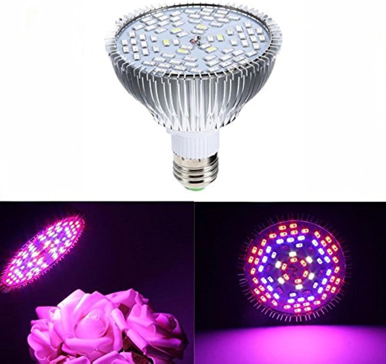 JINHUGU E27 45W 78 LED Vollspektrum Vollspektrum Vollspektrum wachsen helle Lampe Blaub für Pflanzen Hydroponics Gemüse AC85-265V New B07L6751P1    Hat einen langen Ruf  3272de
