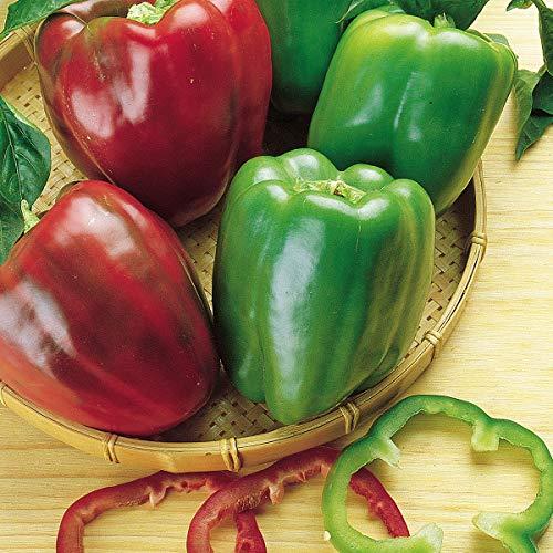 Burpee California Wonder' Heirloom Sweet Red & Green Large Stuffing Bell Peppers, 300 Seeds