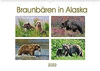 Braunbaeren in Alaska (Wandkalender 2022 DIN A2 quer): Wunderschoene, spektakulaere und emotionale Tieraufnahmen die beweisen, dass Alaska ein Paradies fuer Braunbaeren ist (Monatskalender, 14 Seiten )