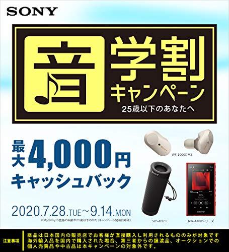 ソニー完全ワイヤレスイヤホンWF-SP900:Bluetooth対応左右分離型防滴仕様4GBメモリ内蔵2018年モデル/マイク付き/イエロー
