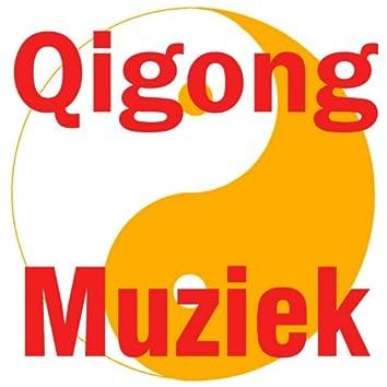 Qigong muziek