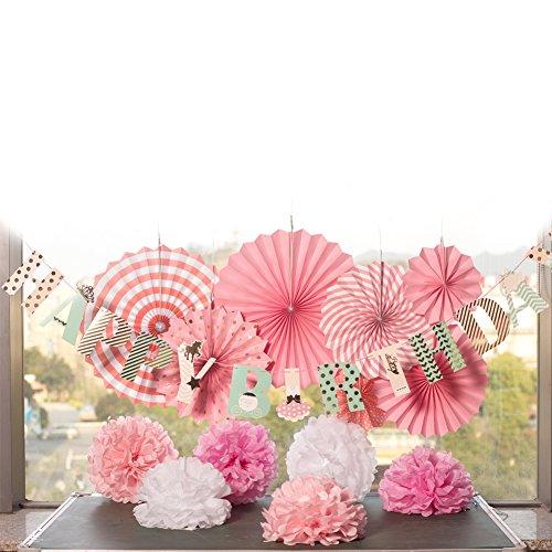 Easy Joy Decorazione, Pompom Carta Ventaglio Festa Anniversario Compleanno per Bambina Baby Shower, Decorazione Interna Rosa