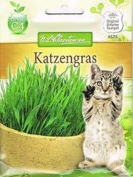 Katzengras-Saatmischung