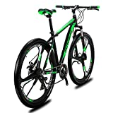 VTSP Fixed Gear Wheel X9 Mountain Bicycle,21 Speeds Suspension Fork 29 inch Wheel Dual Disc Brake Mountain Bike (Green)