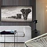 ZFDYH Elefantes Animales Salvajes Pintura de la Lona Carteles e Impresiones Arte de la Pared Imágenes para la Decoración de la Sala 20x40cm 1