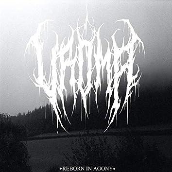 Reborn In Agony