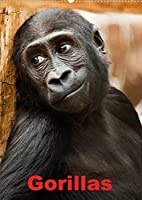 Gorillas (Wandkalender 2022 DIN A2 hoch): Die sanften Riesen Afrikas (Monatskalender, 14 Seiten )