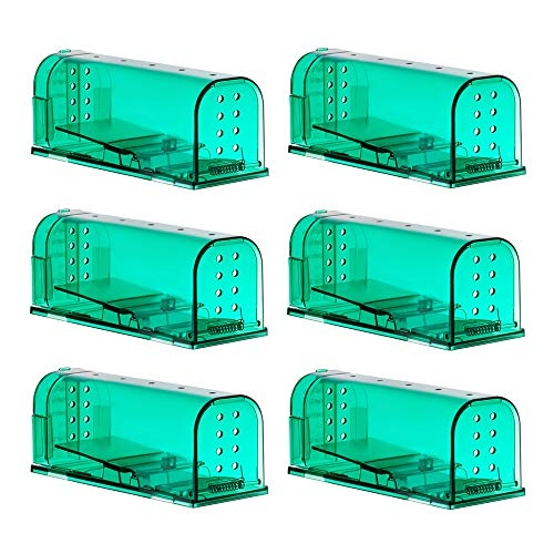 Price comparison product image 6 Pack Humane Mouse Traps Catch and Release Pet and Child Safe No Poison Green Color