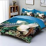 Juego de funda nórdica, foto de tortuga verde y pez león en el arrecife de coral tropical Chelonia Snorkeling Juego de cama decorativo de 3 piezas con 2 fundas de almohada, azul verde blanco, el mejor