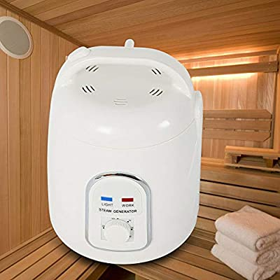 Kaning Sauna Steamer,1.8L 110V Portable Steam Generator Home Shower Bath SPA Steam Pot Sauna Steamer for Home SPA Shower, Body Relaxation, Face Beautifying