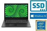 Lenovo Lenovo V340-17IWL - Intel 5405U- 500GB SSD - 8GB DDR4-RAM - CD/DVD Brenner - Windows 10 PRO - 44cm (17.3' LED TFT) Display MATT