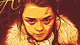 CHANGJIU- Paint by Numbers For Adults and Kids- (B) Póster De Daenerys De Juego De Tronos -DIY Oil Painting Gift Kits Pre-Printed Canvas Art Home Decoration 40*60Cm