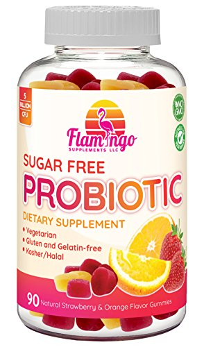 Probiotic Gummies Sugar Free - 5 Billion CFU, Non GMO, Vegetarian (NO Gelatin or Gluten) and Kosher. Probiotics for Women, Kids, and Men. Digestive and Immune Health | 90 Count