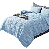 KASENTEX All Season Quilted Comforter Set Chic Modern Printed Pattern Down Alternative Fill 3-Piece with Stylish Boarder Trim Design(Multi Blue, King + 2 King Shams)