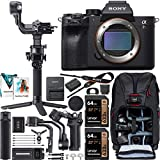 Sony a7R IV Full-Frame Mirrorless Interchangeable Lens Camera Body ILCE-7RM4 61.0MP Filmmaker's Kit with DJI RSC 2 Gimbal 3-Axis Handheld Stabilizer Bundle + Deco Photo Backpack + Software