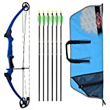 Genesis Archery Original Compound Bow (Right Hand, Blue) with Case and Six NASP Official Arrows Bundle