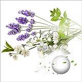 Ajuste para la Fragancia de la Fragancia del Coche de la división del Aire acoplado Bueno del suplemento de Perfume (Color Name : 4pcs Cologne Smell)