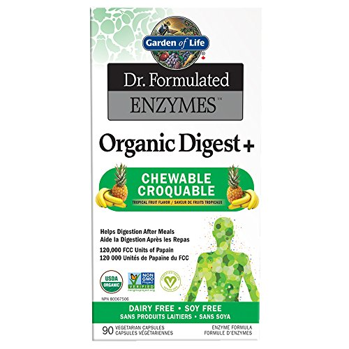 Garden of Life Dr. Formulated Organic Digest+ Probiotics ChewTab 90 Chewable Tablets