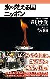 氷の燃える国ニッポン (ワニブックスPLUS新書)