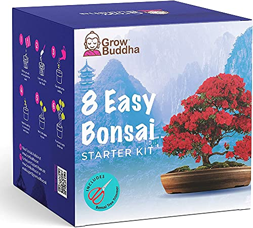 Bonsai Tree Kit | Grow your own 8 beautiful bonsai varieties at home| Complete growing kit - Suitable for beginners and experts - Memorable gift for women, men and children