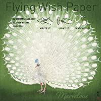 """FLYING WISH PAPER PEACOCK - Write it, Light it, Watch it Fly, You Look Marvelous! - 5"""" x 5"""" Whimsical Magical Mini Kit"""