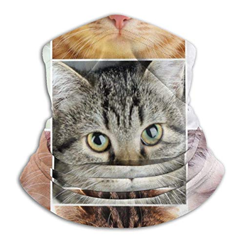 Calentador de Cuello Caras de Gato Rompecabezas Calentador de Cuello Pasamontañas a Prueba de Viento Capucha de Lana Sombreros de Invierno UV Gratis