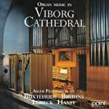 Organ Music in Viborg Cathedral