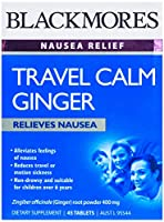 TRAVEL CALM GINGER 錠剤 45錠