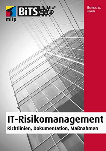 IT-Risikomanagement: Richtlinien, Dokumentation, Maßnahmen (mitp Professional)