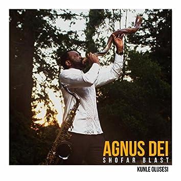 Agnus Dei (Shofar Blast)