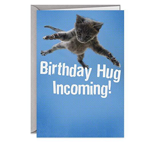 Hallmark Shoebox Funny Birthday Card (Flying Cat)