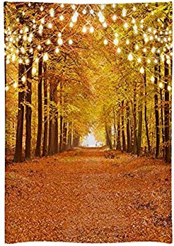 Funnytree Durable Fabric 8x10FT Glitter Autumn Forest Backdrop For Photography Sparkle Natural Scenery Fall Landscape Leaves Thanksgiving Wedding Party Banner Background Decor Supplies Photoshoot Prop