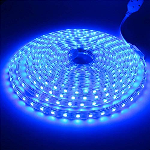 Tiras LED SMD5050 60 Led/m 220v Ip65 Impermeable Con Enchufe ONSSI LED (Azul, 3M)