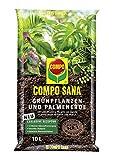 COMPO SANA Grünpflanzen- und Palmenerde mit 12 Wochen...