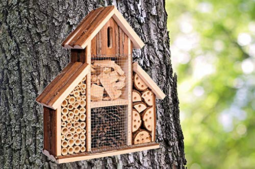 Heritage Fix On Bark Natural Wooden Insect House Hotel Nest Home Bee Keeping Bug Garden Ladybird Box 2630