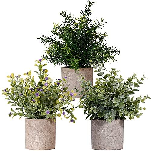 3 pezzi Piante Artificiali in Vaso Bonsai Artificiale Interno Design Pianta Finta da Interno per la Casa da Tavolo Ufficio Ideale per la Decorazione Domestica