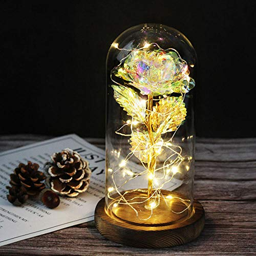 certainPL Rose Silk Rose Beauty and The Beast Rose with Glass Lampshade 20 LED Warm White Valentine s Day Mother s Day Christmas Birthday Gift
