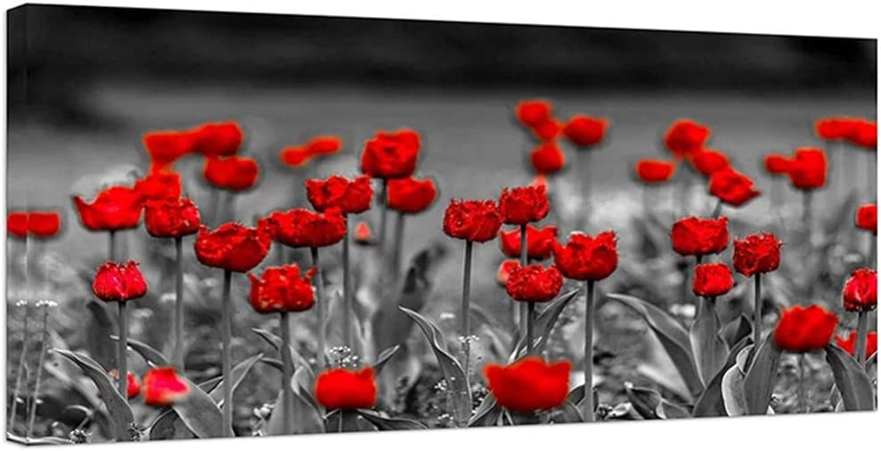 DIY 5D Diamond Painting latest by Direct sale of manufacturer Red Embroi Poppy Number Kits