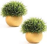 FEILANDUO 2pcs Plantas falsas con macetas Mini Artificial Planta Escritorio Decoración para Baño Imitación Hierba Interior Bonsai (Oro+Oro)