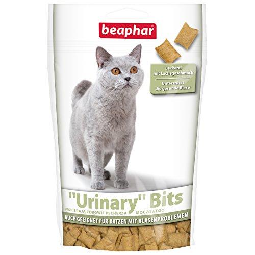 Urinary Bits für Katzen | Knusprige Katzen Leckerlies | Unterstützt die gesunde Blase | Katzen-Sack mit Lachs-Geschmack | Mit Vitamin B 6 | 150 g