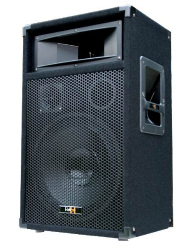 600W DJ Party Lautsprecher Box - 30cm / 12